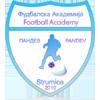 FK Akademija Pandev
