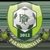 Paragominas PA