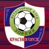 FC Zorkij Krasnogorsk